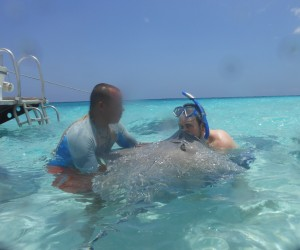 My Husband Kissing a Stingray